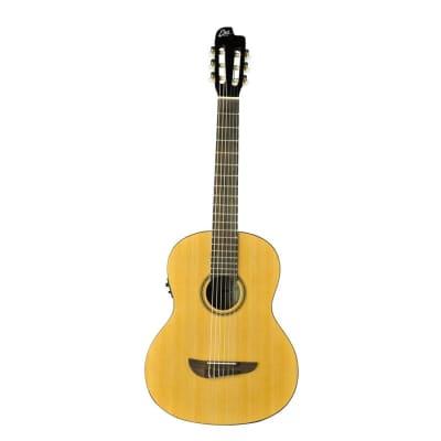 Eko Guitars Sparkling Flame Series Acoustic Electric Guitar Nylon Strings - Natural for sale