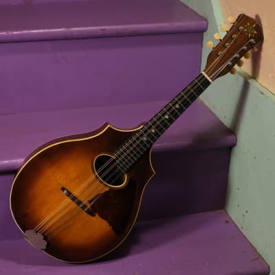1920 Vega Style 202 Cylinder-Back Mandolin (Sunburst, Vintage, Old, w/Chip Case) for sale