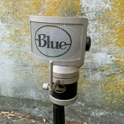amazing Blue Mouse Large Diaphragm Condenser Microphone with Rotating Head