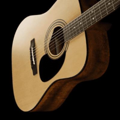 Cort Standard Series AD810 Acoustic Guitar, Open Pore Natural,