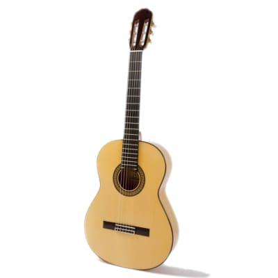 Raimundo Concerto 145 for sale