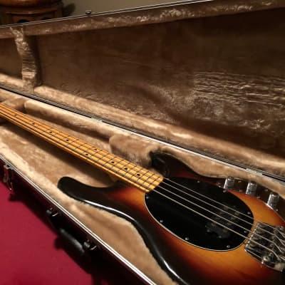 1977 Sunburst Music Man StingRay Bass