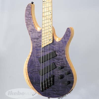 Acacia Guitars Atlas Modern 5st -Purple Dip- for sale