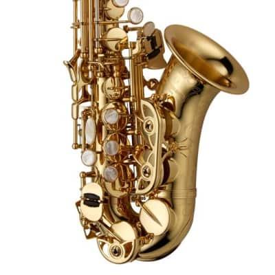 Yanagisawa SCWO10 Standard Bb Soprano Saxophone, Curved, Hand-Engraved Bell