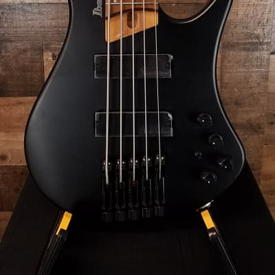 Ibanez Bass Workshop EHB1005 Black Flat, Open Box, Free Ship 4577 for sale