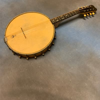 SS Stewart Slingerland 1900's Mandolin Banjo for sale