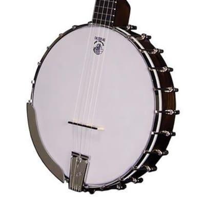 Vega Little Wonder Open Back 5 String Banjo NEW