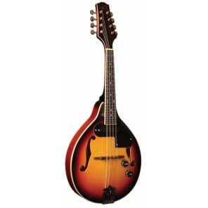 Morgan Monroe RT-M1E Rocky Top Electric Mandolin