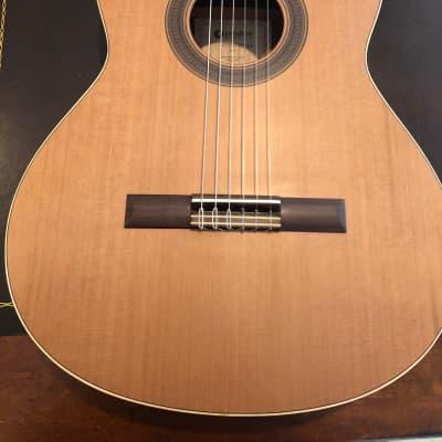 Prodipe Student 4/4 Acoustic Guitar