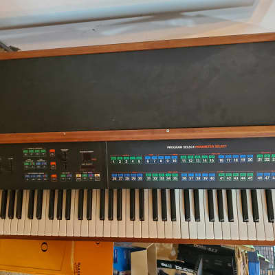 Rhodes Chroma.  Non functioning.  Worked until the power supply died. Sold  As Is, No returns.