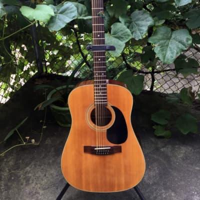 Goya G-415 12 String for sale