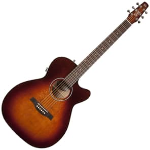 Seagull Performer Concert Hall CW QIT Burnt Umber