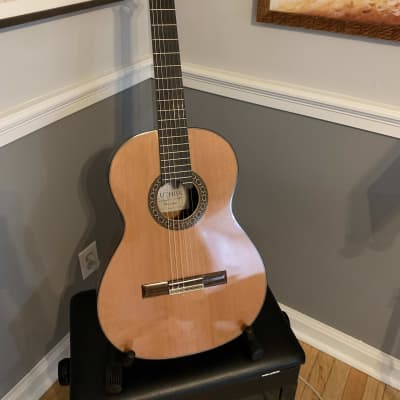 Alhambra Mengual y Margarit Cedar and Indian Rosewood 2018