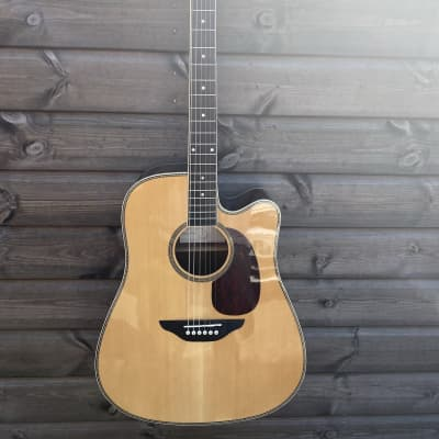 Fairclough Starling Electro Acoustic Guitar for sale