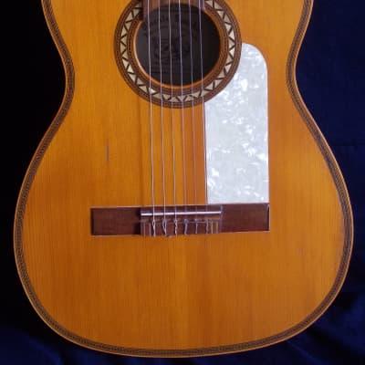 Ricardo Sanchis  guitar (1950) for sale