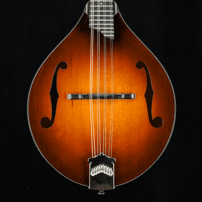 Collings MT 2019 Honey Amber with Upgrades -  Torrefied Spruce Top