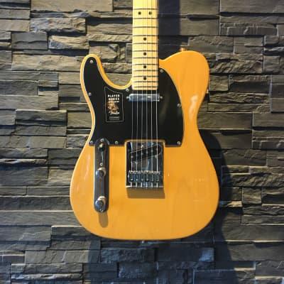Fender Player Telecaster, Left-handed, Maple Fingerboard, Butterscotch Blonde