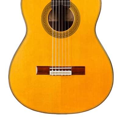Teodoro Perez Maestro 2014 Classical Guitar Cedar/African Rosewood for sale