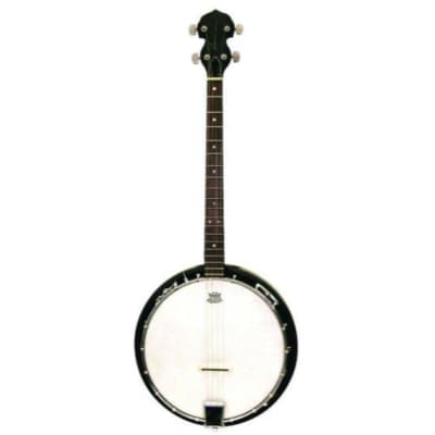 Trinity River TRTB1 Tenor 4-String Banjo with Gig Bag for sale