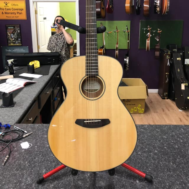 Breedlove Discovery Concert 2017 image