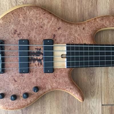 Handmade Elrick 5 Five String Fretless Bass maple/swamp ash/ebony