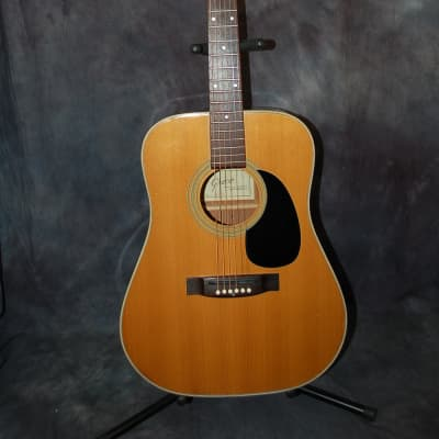 1970 Greco Model GR623 Dreadnought Imported by Kustom Pro Setup Softshell Case for sale