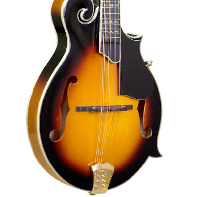 Gold Tone GM-70+ Professional F-Style Mandolin for sale