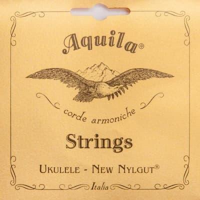Aquila USA 10U High G Tenor Ukulele String Set - All Nylgut