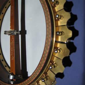 vega artist vegaphone tenor banjo natural reverb