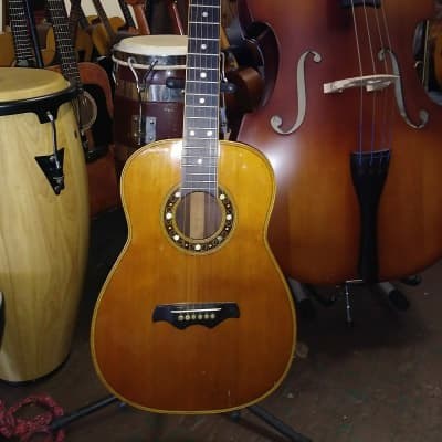Bozo 12 Fret Steel String for sale