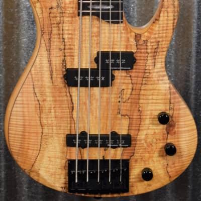 ESP LTD RB-1005 Rocco Prestia Spalted Maple 5 String Bass LRB1005SMNS #0455