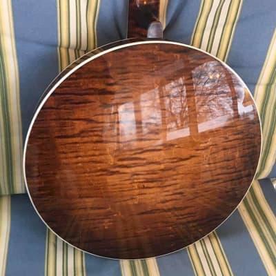 Hawthorn Maple Bowtie  2020 Sunburst