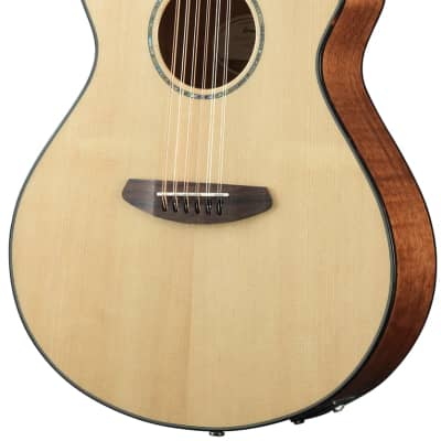 Breedlove Pursuit Concert CE 12-String Spruce / Mahogany Natural 2020