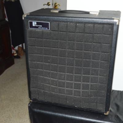Polytone Mini Brute III 1980 for sale