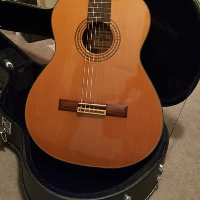 Aria  A 560 S Concert (1970's ) for sale