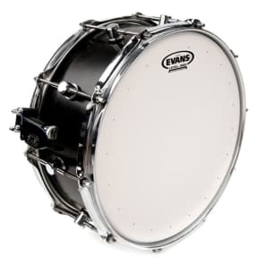 "Evans 14"" Genera HD Dry Coated White"