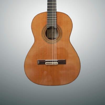Antonio Aparicio AA132 2014 - Left Handed for sale