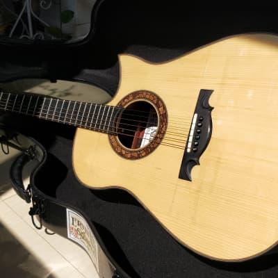 Toru fujii  MDC  ressuie Ervin somogyi guitar for sale