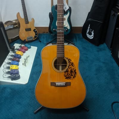 NEW Blueridge Historic Series BR-160 Dreadnought Acoustic with Matching Padded Gig Bag for sale