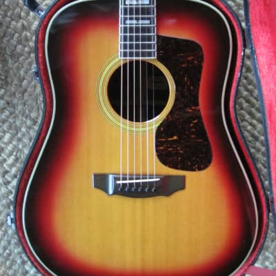 Jagard D-55  1970 Sunburst for sale