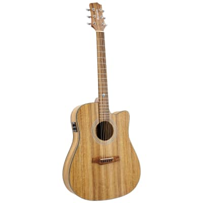 RANDON RGI-M4CE Mango - Westerngitarre for sale