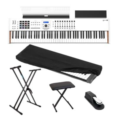 Arturia KeyLab 88 MkII - Keyboard Stand - Bench - Nektar NP2 - 88key Dust Cover
