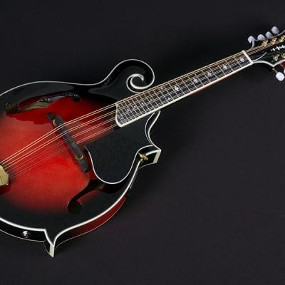 Washburn M3SWETWRK Americana Series Florentine F-Style Acoustic-Electric  Mandolin w/Hardshell Case