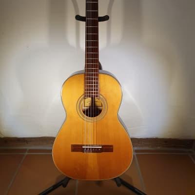 Vintage Akustik Gitarre Ariana A102N for sale