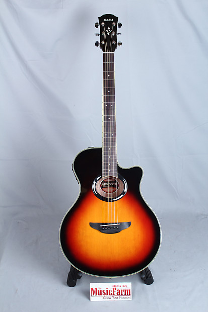 Yamaha apx500iii vs thinline acoustic electric guitar for Yamaha apx500iii thinline