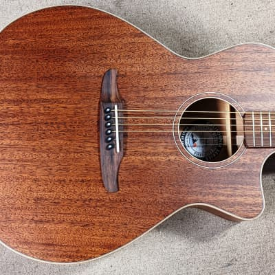 Fender California Traditional Series Newporter Special