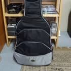 Ritter RG4000-9-E Electric Gig Bag Black and Chrome image