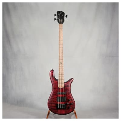 Spector NS 2 Custom for sale