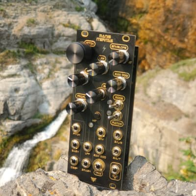 Noise Engineering Manis Iteritas Replacement panel By Audio Parasites; Limited Run