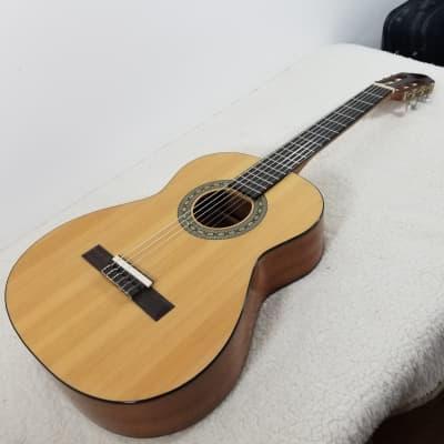 Austin AC334N Classical Guitar for sale